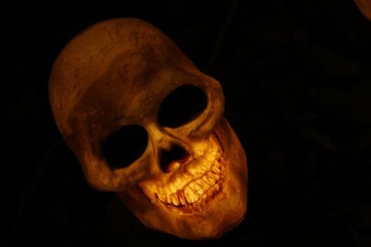 skull-570975